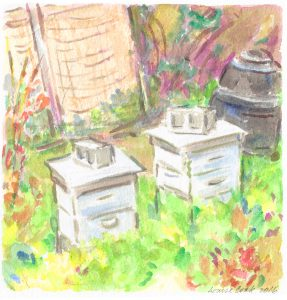 beeboxes2
