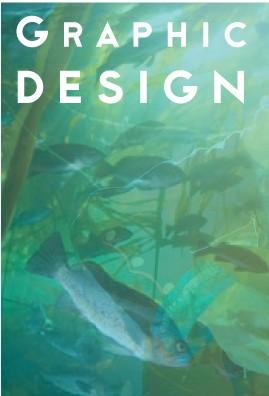graphicdesignbutton